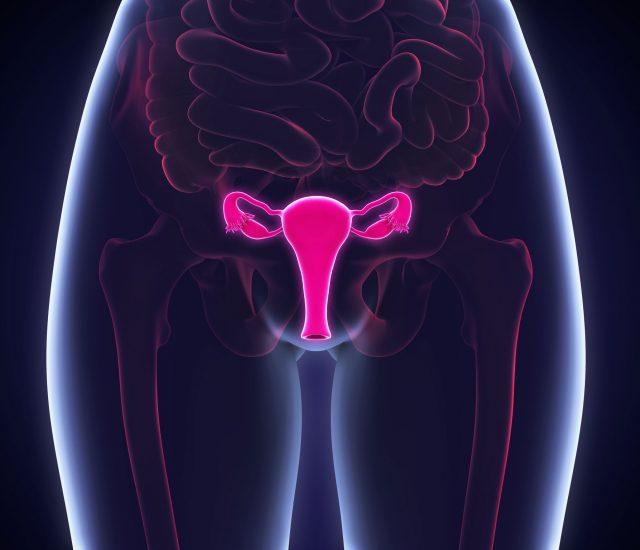 womans-exam-healthcare-gynecoly-yenni-ceballos-john-hoover